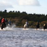 Horse riding in East Clare